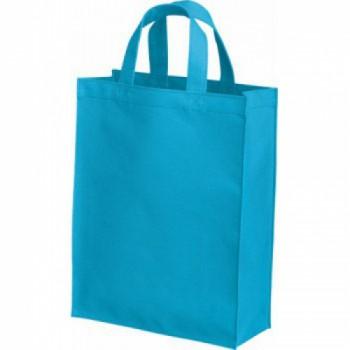 ポリカジュアルバッグ(L)のターコイズ